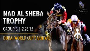 Nad Al Sheba Trophy