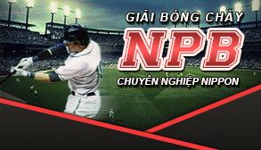 Giải bóng chày chuyên nghiệp Nippon